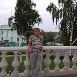 Алексей, Ульяновск, 35 лет