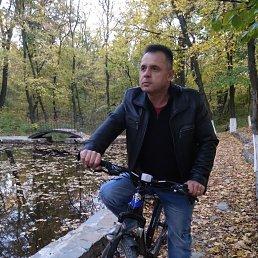 андрей, 44 года, Ровеньки