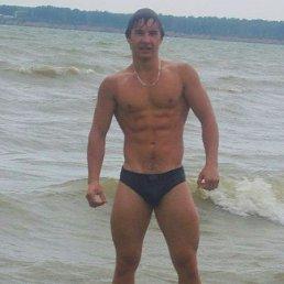 Vadim, 29 лет, Ужгород