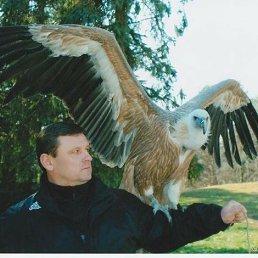 Игорь, Сочи, 53 года