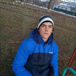 MOLODOY, 20 лет, Краснодар