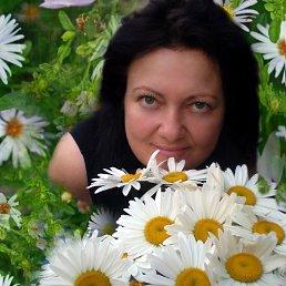 нина, 51 год, Краматорск