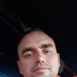 Александр, 37 лет, Чаплыгин