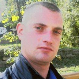 Вова, 33 года, Синельниково
