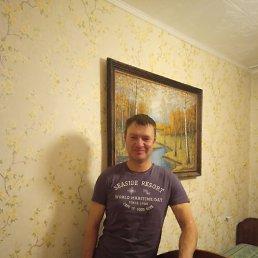 Александр, 37 лет, Барнаул