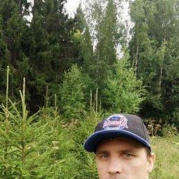 Роман, 33 года, Внуково