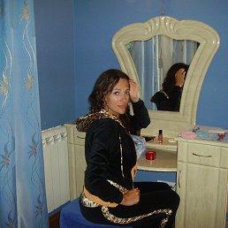 Лена, 44 года, Ярославль