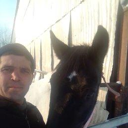Шамиль, 29 лет, Красноярск