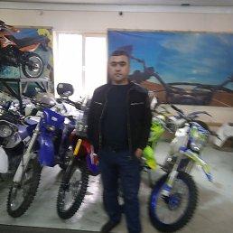 Озодбек, 34 года, Звенигород