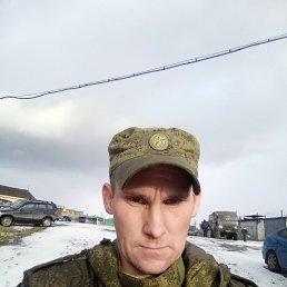 Максим, 36 лет, Мурманск