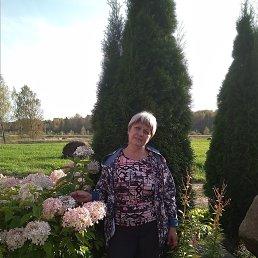 Галина, 59 лет, Пошехонье