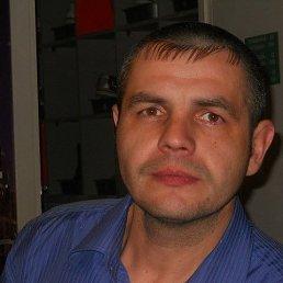 Андрей, 41 год, Барнаул