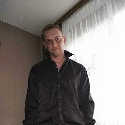 Дмитрий, 34 года, Егорьевск