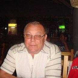 владимир, 64 года, Тюмень