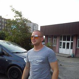 Алексей, 32 года, Москва