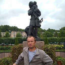 Тохин, 42 года, Москва