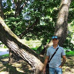 Алексей, 40 лет, Электросталь
