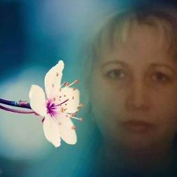 Наталья, 46 лет, Подольск