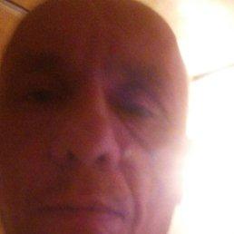 Алексей, 43 года, Владивосток