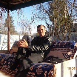 Владимир, Ульяновск, 66 лет