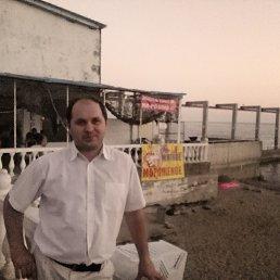 Владимир, 37 лет, Волгоград