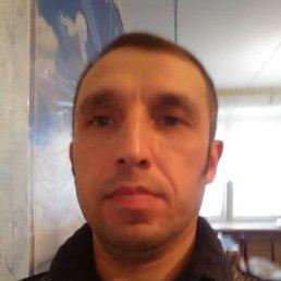 Дмитрий, 41 год, Глазов