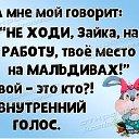 Фото Виктория, Минск, 38 лет - добавлено 9 декабря 2020 в альбом «Коллекция зайцев»