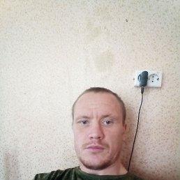 Алексей, Санкт-Петербург, 31 год