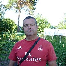 Дмитрий, Курск, 45 лет