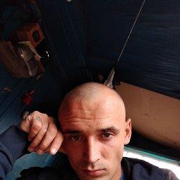 Vladimir, 34 года, Белокуриха