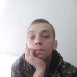 Андрей, 28 лет, Боровичи