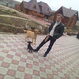 Денис, 29 лет, Молодогвардейск