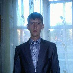 Антон, 27 лет, Кемерово