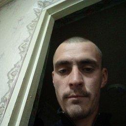 Андрей, 29 лет, Васильков