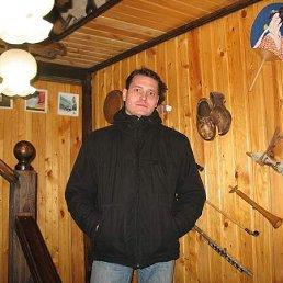 Роман, Киров, 41 год
