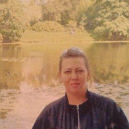 Светлана, 43 года, Тула