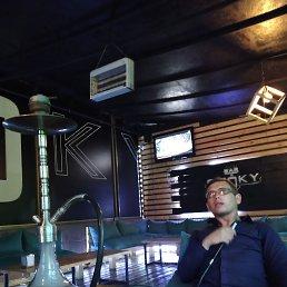 Николай, 24 года, Запорожье