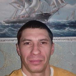 Sasa, 37 лет, Каменец-Подольский