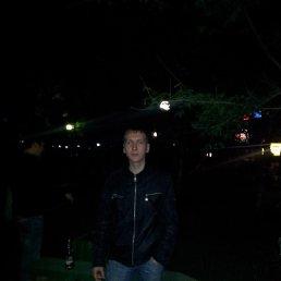 Алексей, 31 год, Владивосток