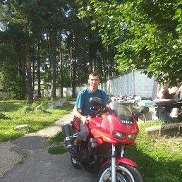 Иван, 42 года, Звенигород