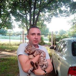 Игорь, 33 года, Смела