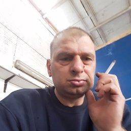Шото, 35 лет, Жуковский