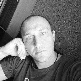 Артем, 36 лет, Ставрополь