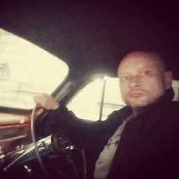 Дмитрий, 41 год, Подольск