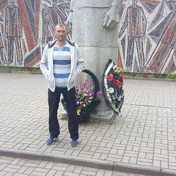 Алексей, Смоленск, 35 лет