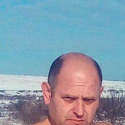 Dru, 43 года, Краснодон