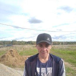Сергей, 38 лет, Вологда
