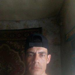 Artem, 29 лет, Кокшетау