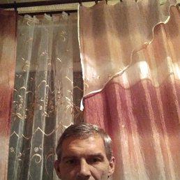 Роман, 43 года, Гатчина