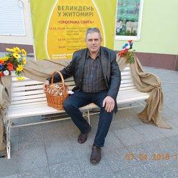 Виктор, 60 лет, Житомир